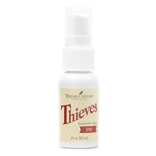 household-thieves-spray-1