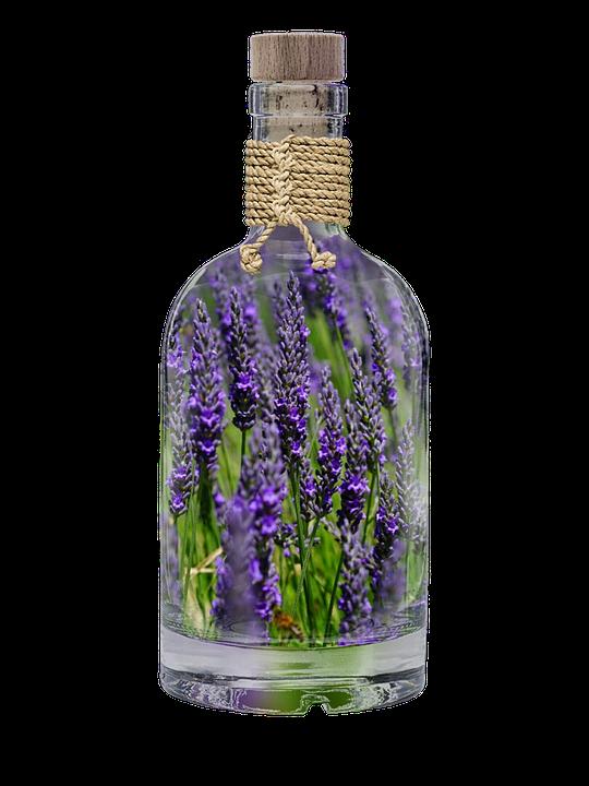 lavender-2662229_960_720