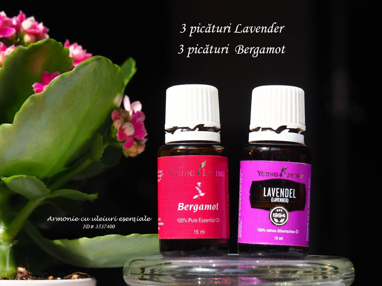 Bergamot si Lavanda_resized