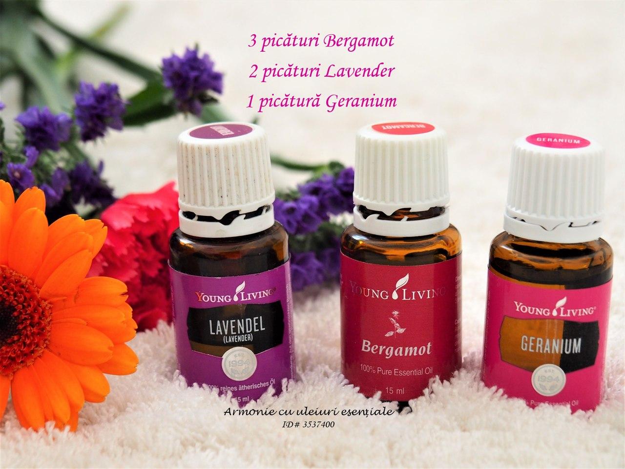 Lavanda, Geranium si Bergamot_resized