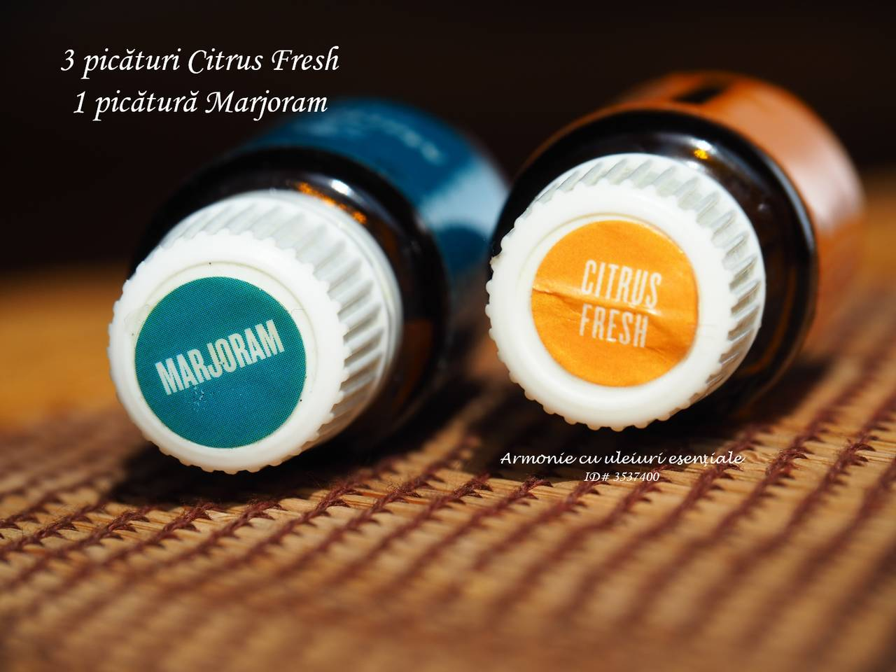 Maghiran si Citrus Fresh_resized