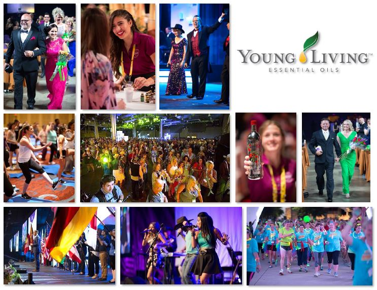 YL events