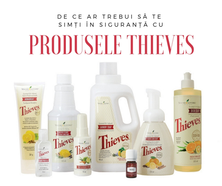 cover - Safety of Thieves products_resized