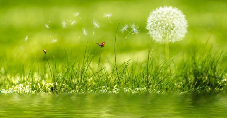 background-image-beautiful-blur-414586