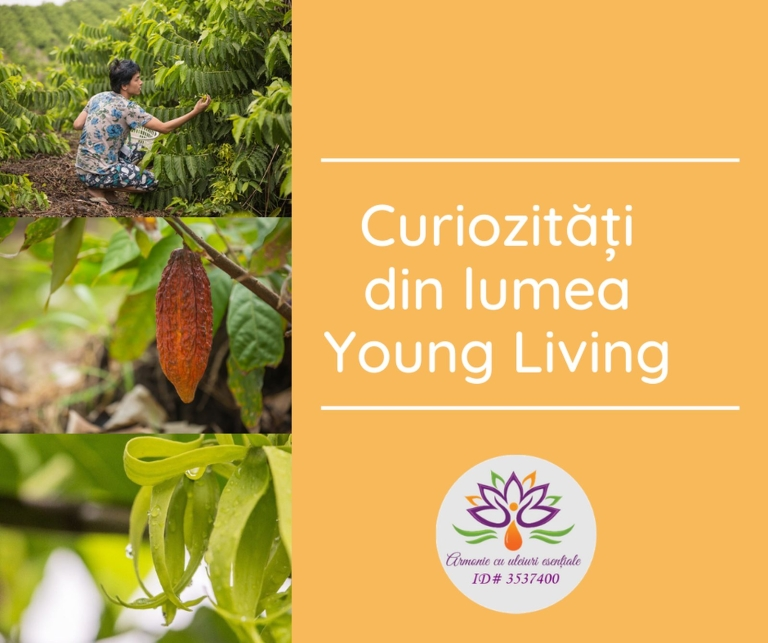 Curiozitati din lumea Young Living - title_resized