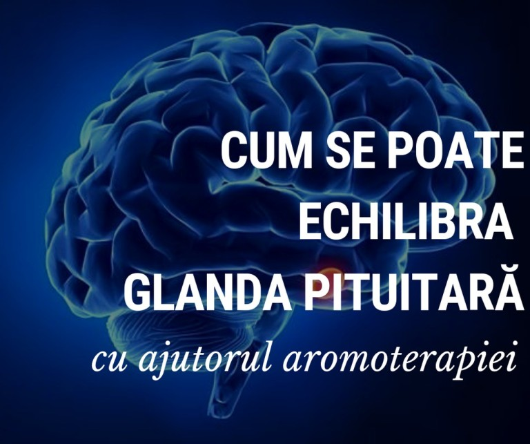 Cum se poate regla glanda pituitara-resized