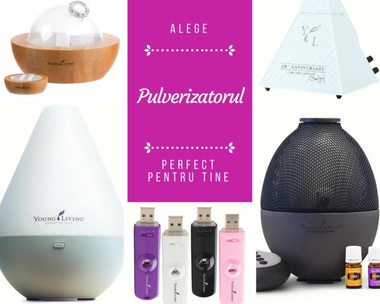 Alege pulverizatorul perfect pentru tine